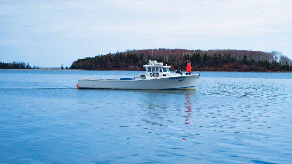 North Nova Seafoods Fishing